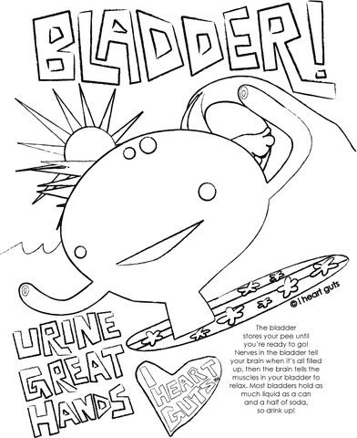 Free and super fun bladder colouring page. These would be