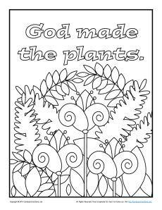 God Made the Plants