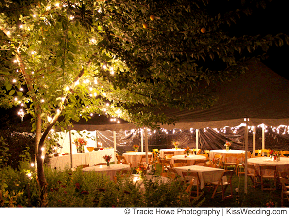 Cheap Backyard Wedding on Pinterest  Laos Wedding