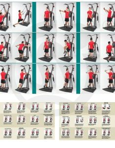 Weider  factor home gym workouts also rh homeworkoutszarikoyaspot