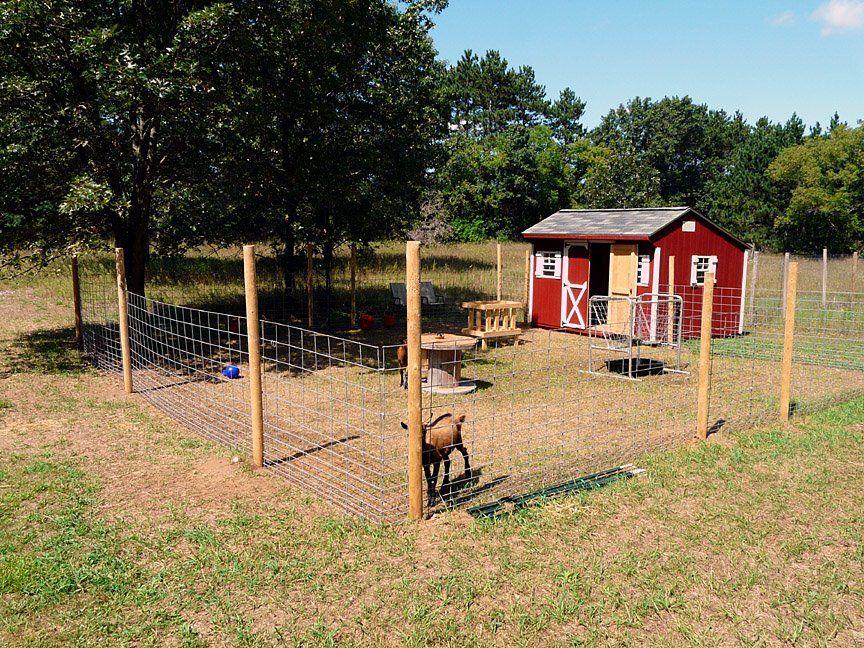 Best 25 Goat Pen Ideas On Pinterest Goat Playground Goat House