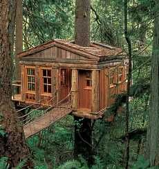 Tree House Designs Crafted By Seattle Based TreeHouse Workshop