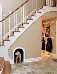 insanely cool remodeling ideas for your home clever and dog also rh pinterest