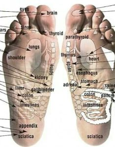 Young living essential oils application reflexology chart for the feet youngliving also rh pinterest