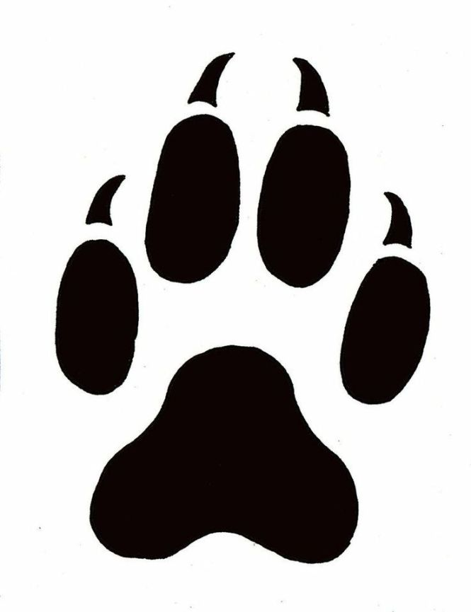 Leopard paw print size best leopard in the word 2017 leopard paw print outline prints template printable pronofoot35fo Choice Image