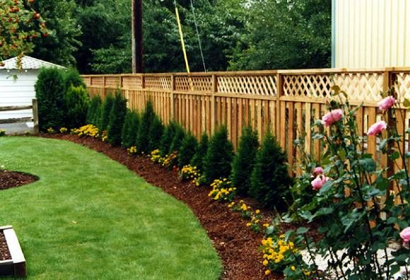 I Would Love To Someday Have A Fence With Lattice Along The Top So