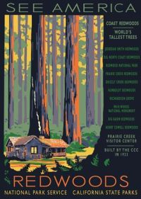 redwood national park brochure - Google Search | Brochure ...