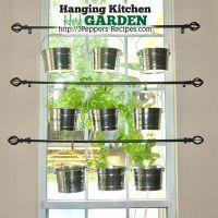 Hanging Kitchen Herb Garden | Kitchen herb gardens, Herbs ...