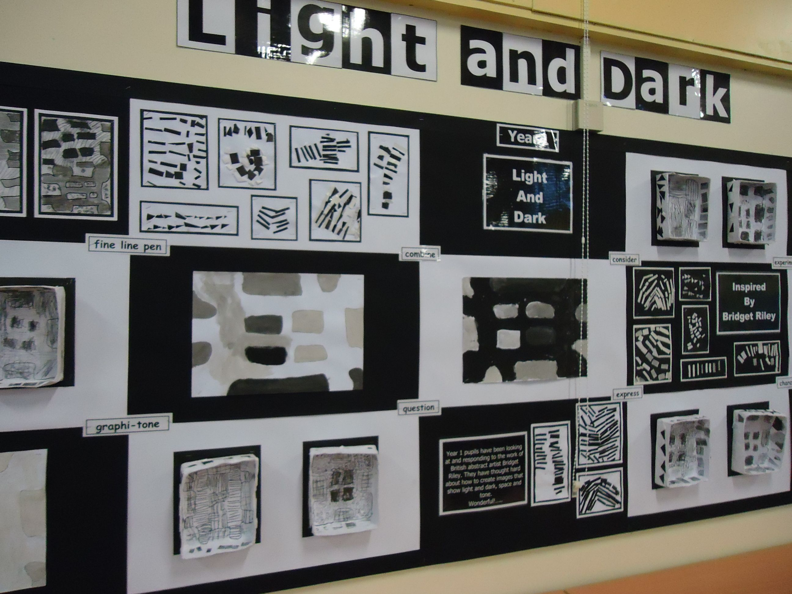 Light And Dark Project Display Year 1
