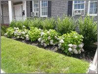 This garden picture is of a simple foundation of endless ...