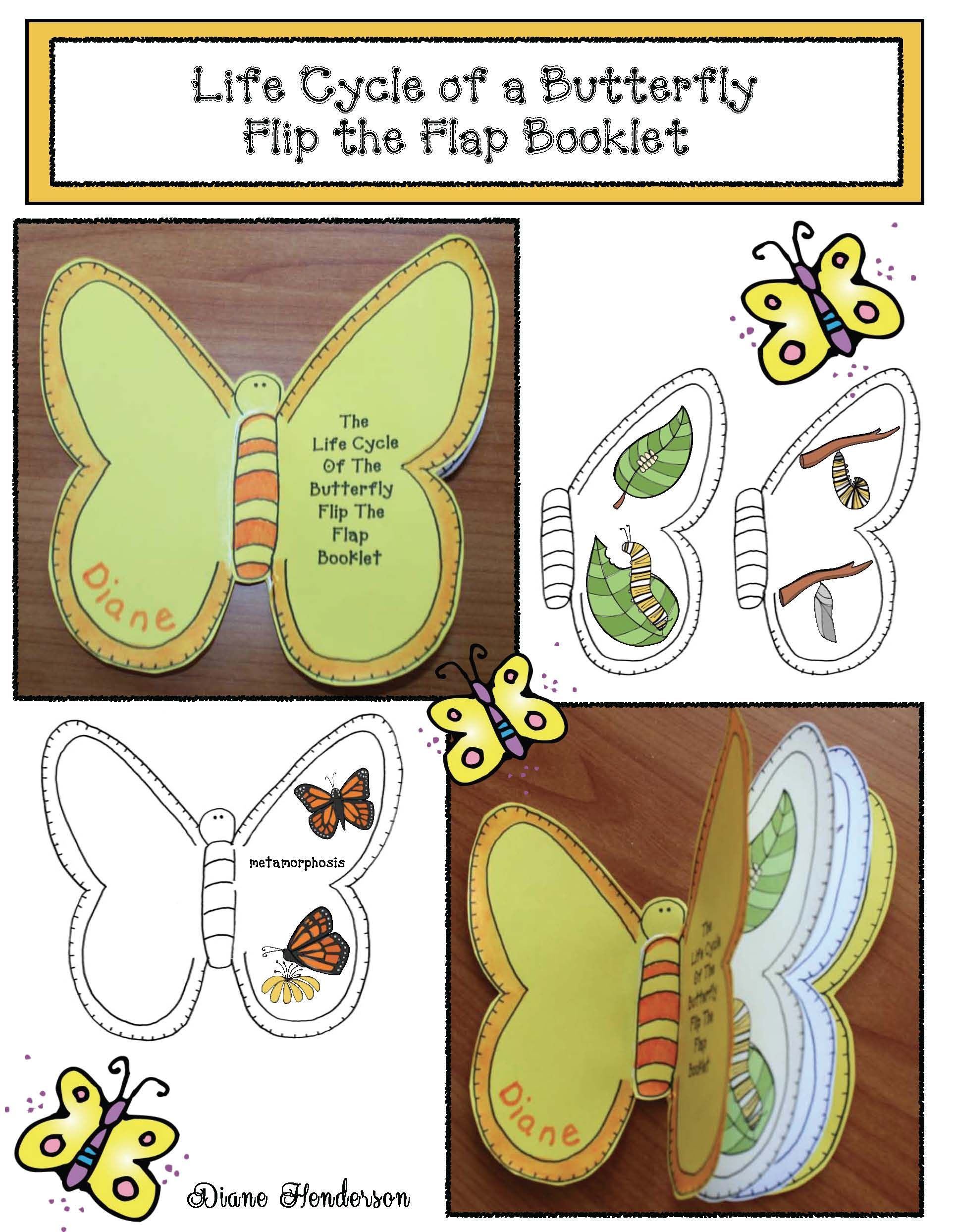 Life Cycle Of A Butterfly Activities Life Cycle Of A