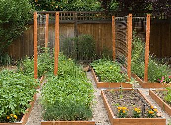 DIY Garden Boxes With Covers For Vegetables Garden Vegetable