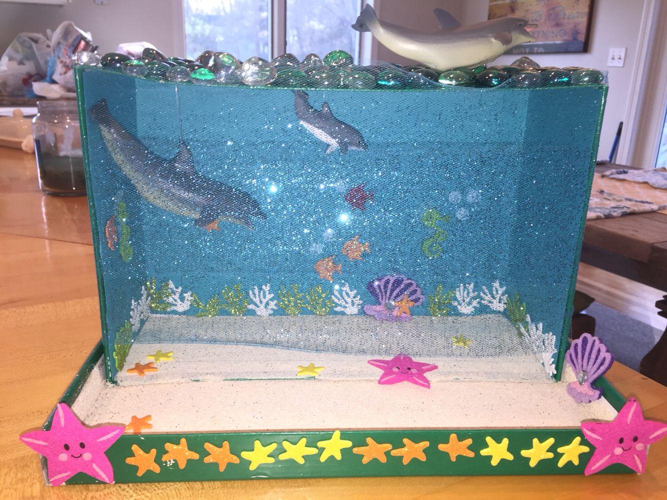 Dolphin Habitat Diorama