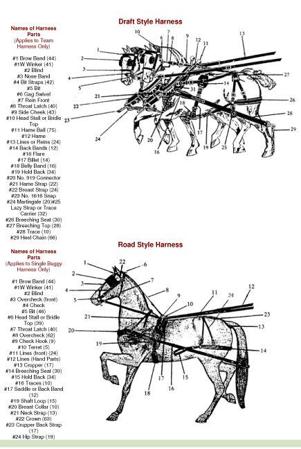Mule 3010 Snow Plow Wiring Diagram