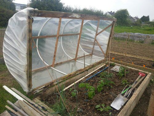 Loving This Homemade Mini Polytunnel At The Allotment Community