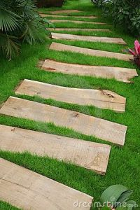 Walking path created with wooden planks Maybe across the ...