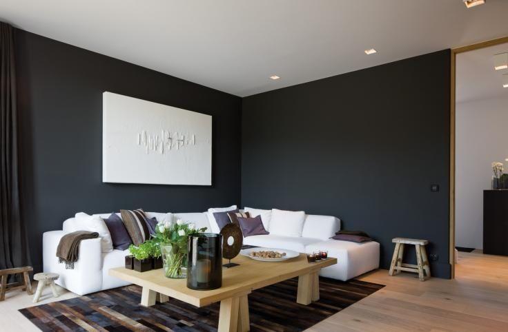 antraciet grijs woonkamer  Google zoeken  Ideen voor
