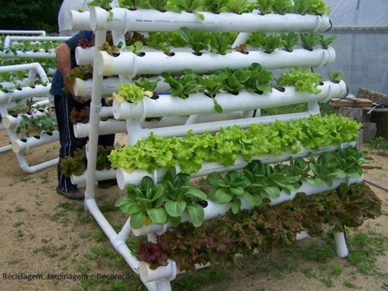 8 DIY PVC Gardening Ideas And Projects Gardens Planters And