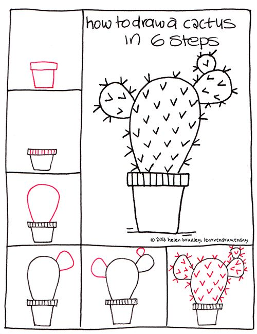 Learn to Draw a Cactus in 6 Steps : Learn To Draw