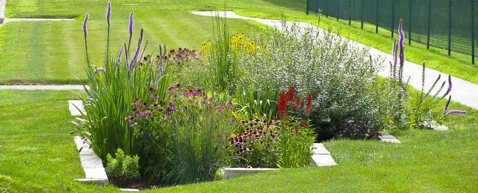 Iowa Landscaping Ideas Forever Green Coralville Iowa City