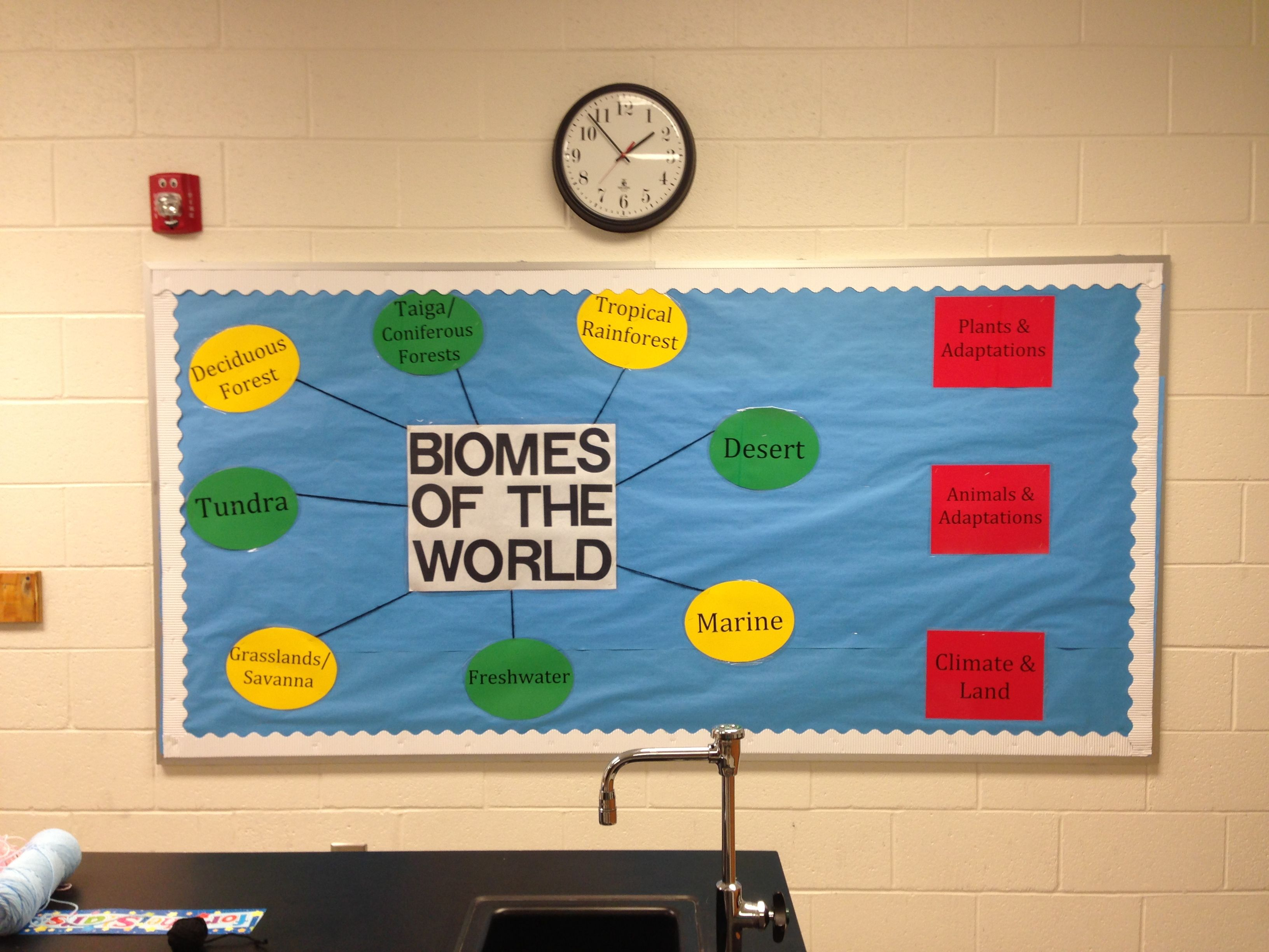 Biomes Of The World Science Interactive Bulletin Board Habitats Vocabulary Preview M Pruitt