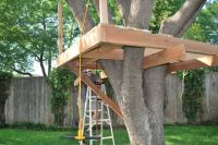 How to Build a Treehouse | Treehouse, Tree houses and ...