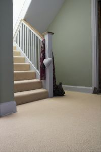 neutral carpet / green walls | Hallway | Pinterest | Style ...