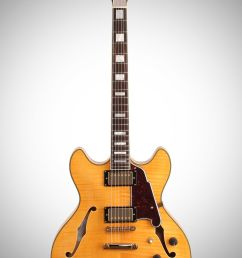 d angelico exdc semi hollowbody electric guitar with case on charvel wiring diagram wiring [ 2012 x 3200 Pixel ]