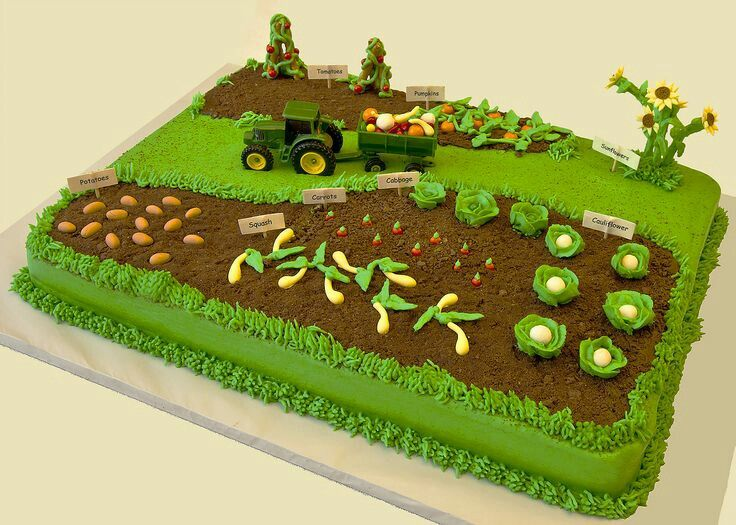 Tractor cake  Retirement party  Pinterest