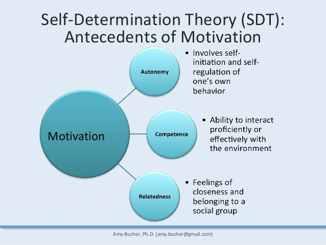 Exercise Psychology And Self Determination Theory