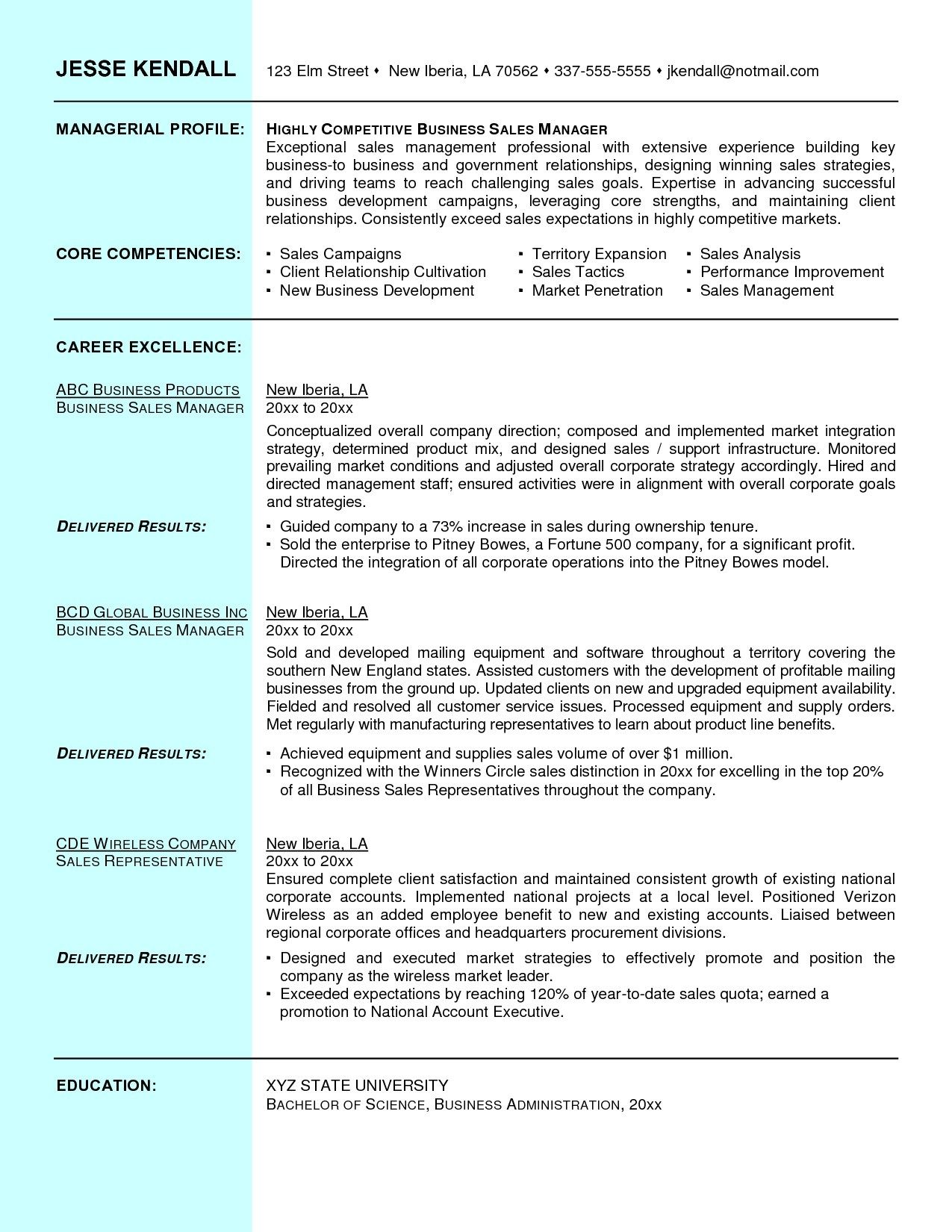 Sales Executive Resume Sample Doc Account Manager Personal