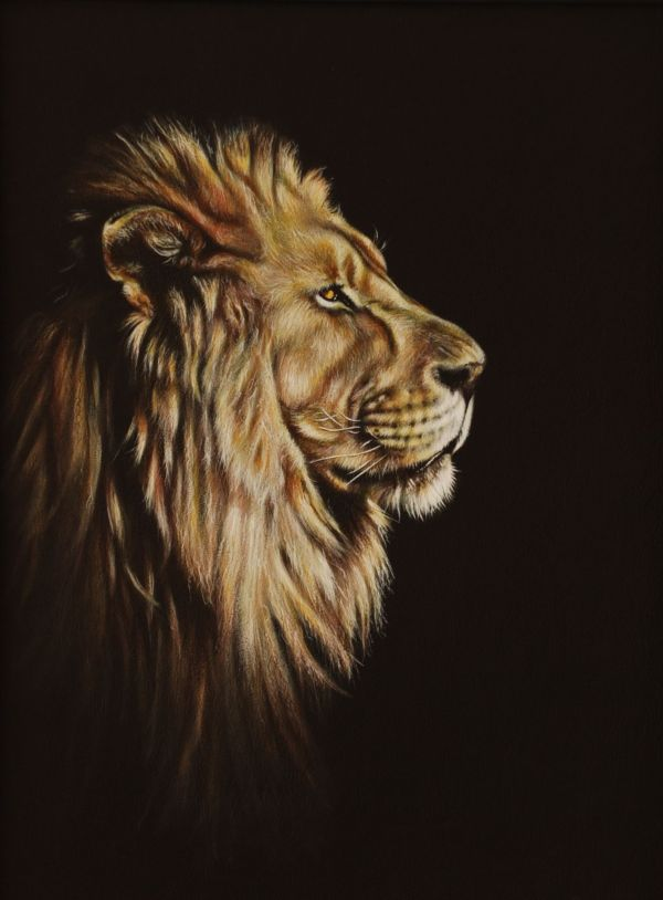 Lion Portrait Painting Karl Hamilton- Saatchi Art And Lions