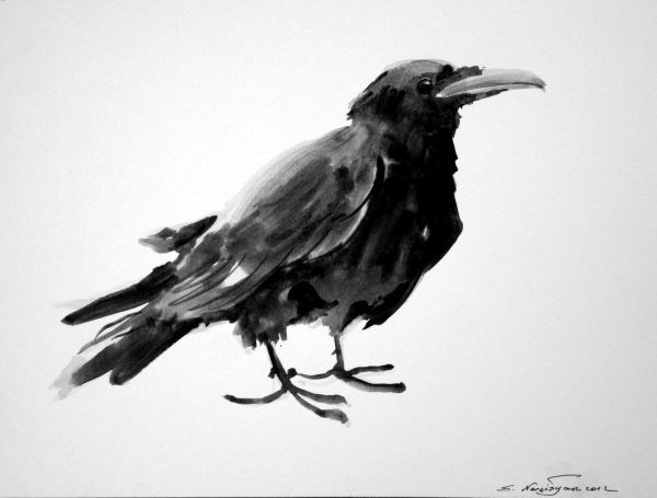 Crow Original Watercolor Painting 9 X 12 Black