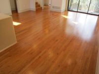 Golden Pecan hardwood floors | Ideas for the House ...
