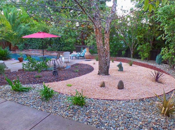 simple drought tolerant backyard