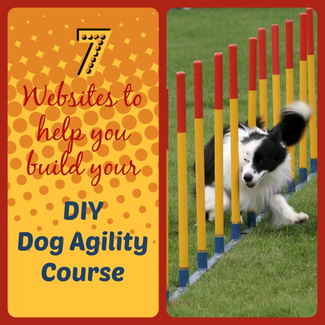 Diy dog agility course dog agility diy dog and wordpress