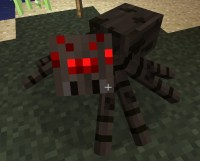 Minecraft Spider Images