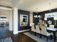 Meritage Homes Model Home Lantana - beautiful navy walls ...