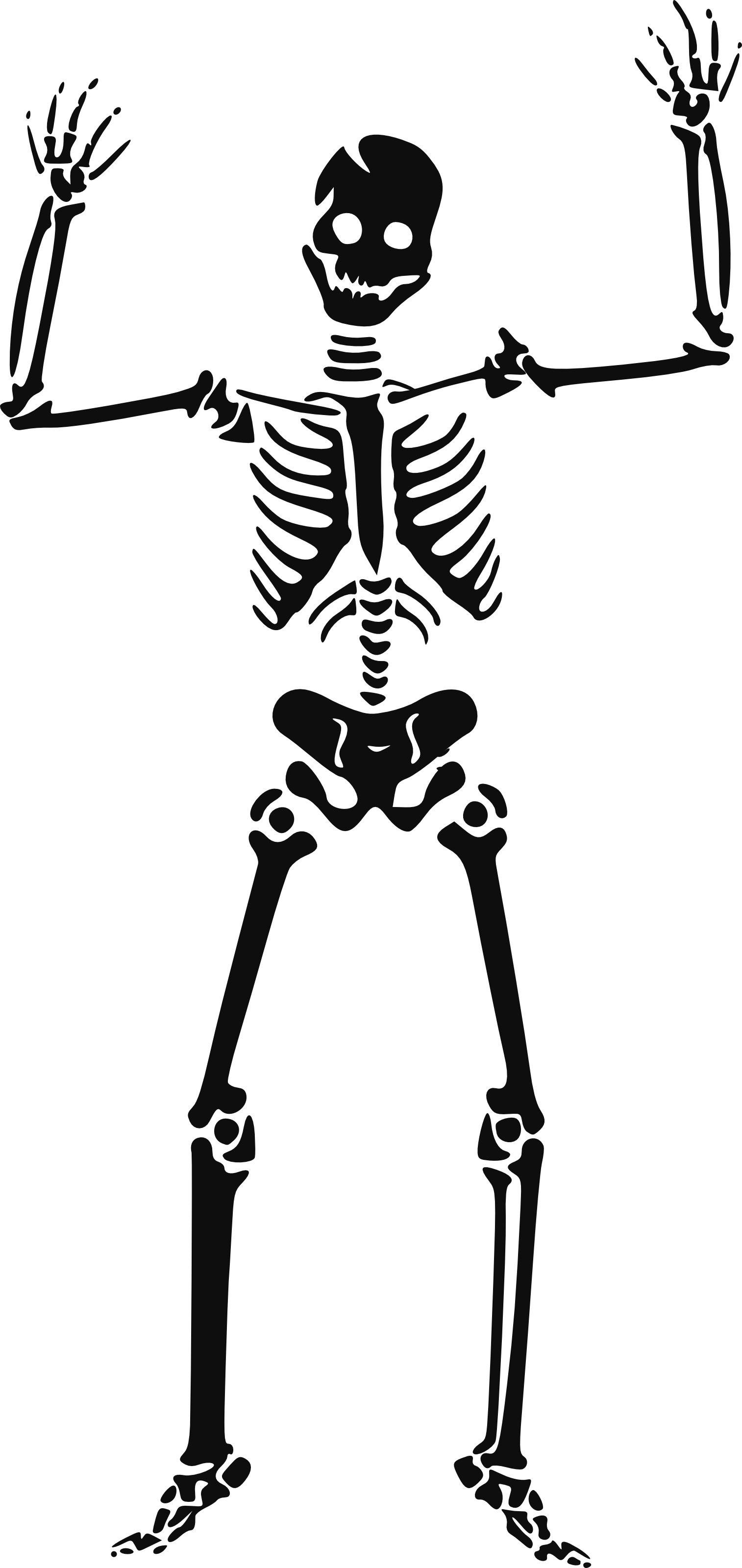 117 Happy Skeleton Free Halloween Vector Clipart