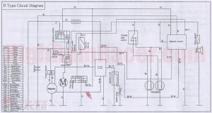 110Cc Pocket Bike Wiring Diagram | Need Wiring Diagram