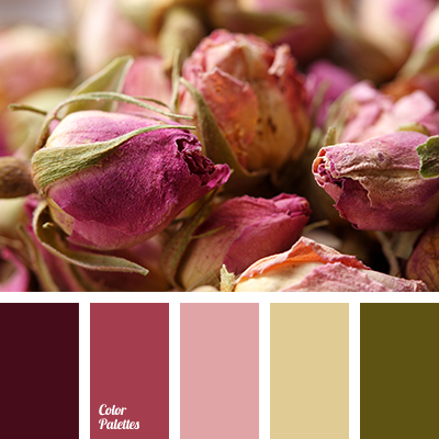 dusty green dusty pink color of dried roses colors