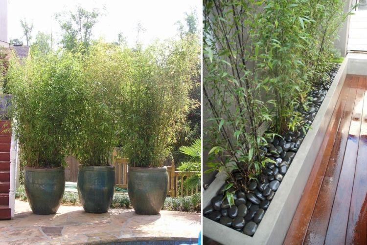 Stunning Pflanzen Topfen Kubeln Terrasse Pictures - Ideas & Design ...