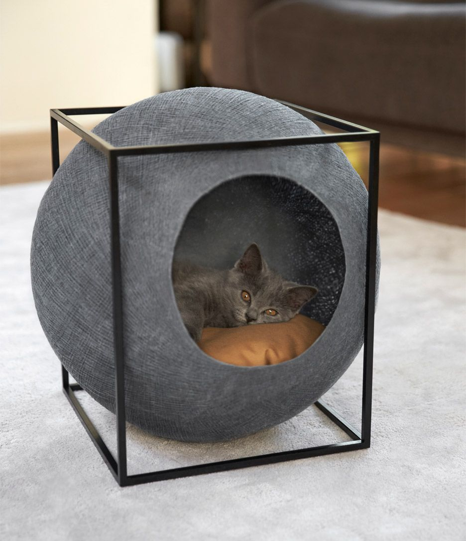 20 Cool Cat Beds For Your Furry Friend