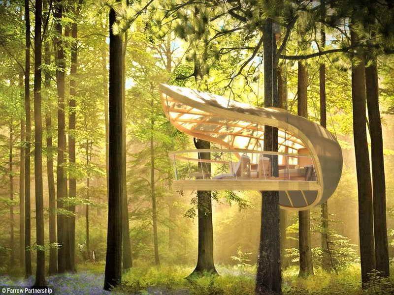 House Design Luxury Cool Tree Houses Villa 013 BIEICONS Backyard