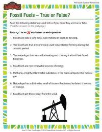 3rd Grade  Fossils Worksheets 3rd Grade - Printable ...
