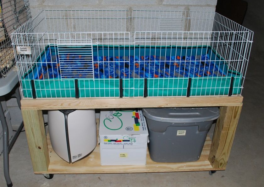 Ideas For Guinea Pig Housing I Like The Plain Cage Lined With