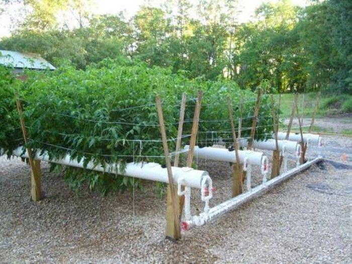Hydroponic Gardening Ideas Vertical Garden Pinterest