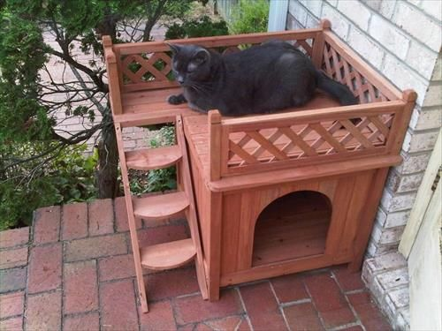 Wooden Pallet Cat House Cat Houses Wood Pallets And Pallets