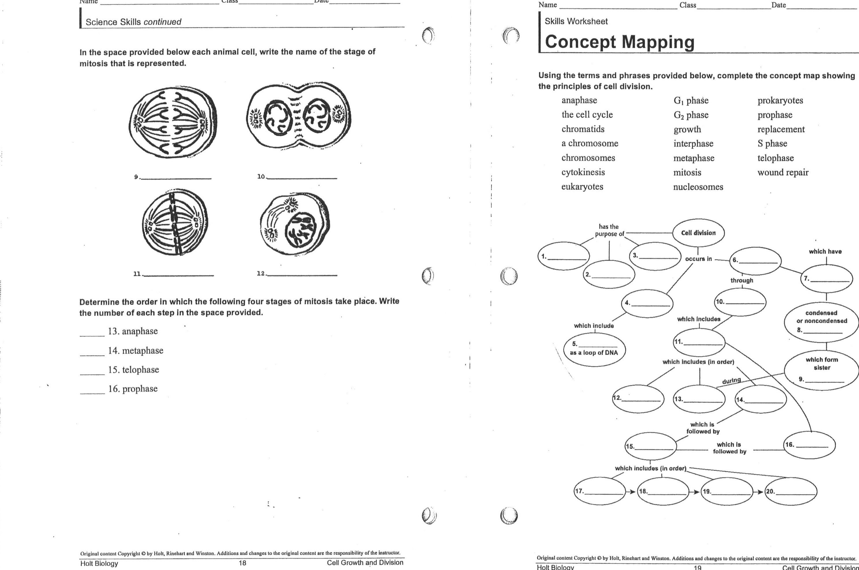 worksheet. Meiosis And Mitosis Worksheet. Grass Fedjp