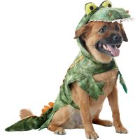 Petco Alligator Halloween Dog Costume KODI for halloween ...
